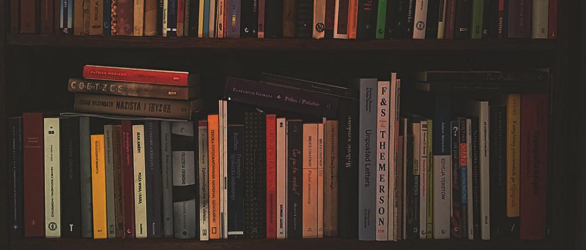 ilustracja z półką z książkami do tekstu: Czytelnictwo w Polsce. Równia pochyła?
