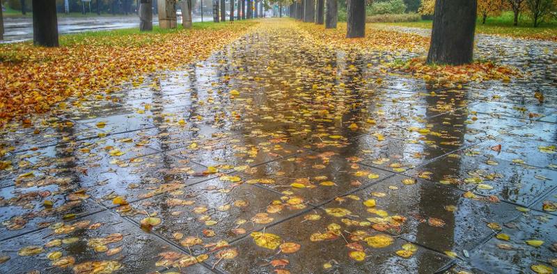 ksiazki-na-jesien